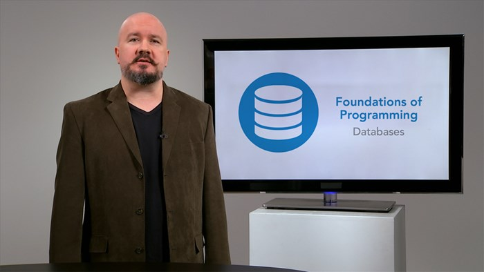 Foundations of Programming: Databases