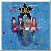 Big Star Small World (tribute to Big Star)
