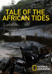 Tale of the African Tides