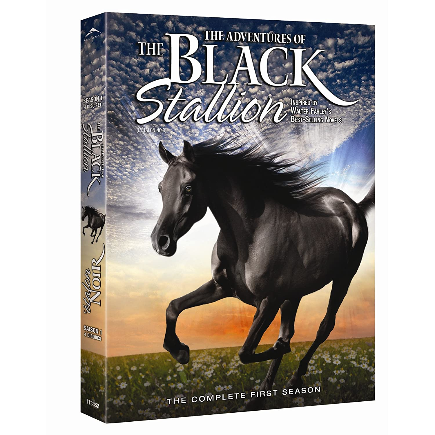 The Adventures of the Black Stallion