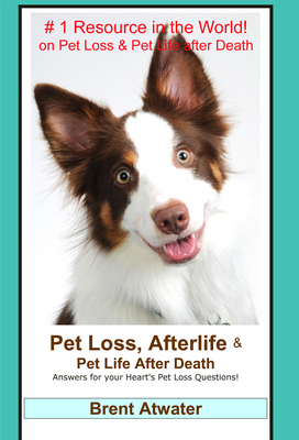 Pet Loss, Afterlife and Pet Life After Death