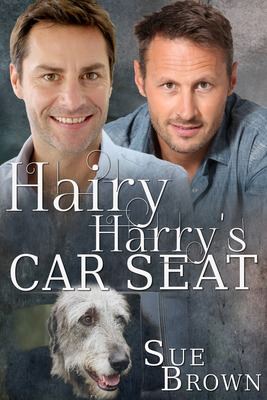 Hairy Harry's Car Seat