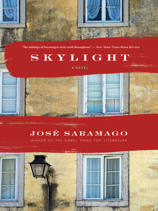 Cover image for Skylight