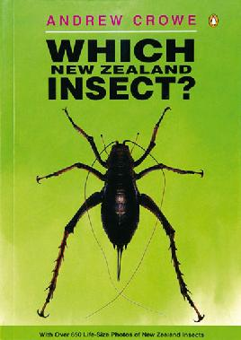 Cover of Which New Zealand Insect?
