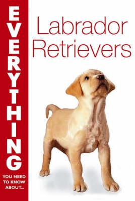Everything You Need to Know About-- Labrador Retrievers