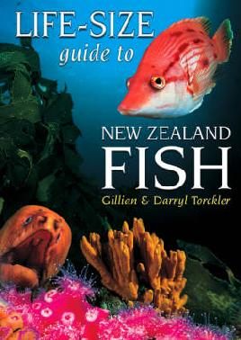 Book Cover of Life-Size Guide to NZ Fish