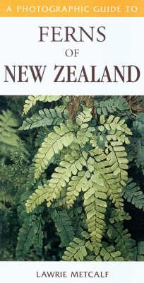 Cover of A photographic guide to ferns of New Zealand