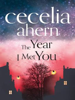 Cover image for The Year I Met You