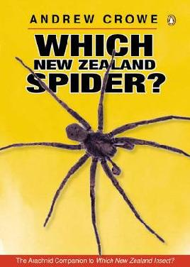 Cover of Which New Zealand Spider?