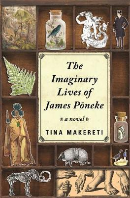 Catalogue link for The imaginary lives of James Pōneke