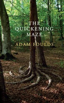 Cover of the Quickening maze