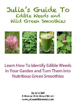 Cover of Julia's guide to edible weeds and wild green smoothies