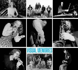 Cover of Visual memories