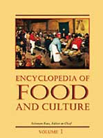 COver of Encyclopedia of Food and Culture