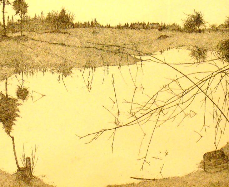 The Pond Winter