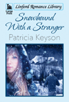 Snowbound With A Stranger